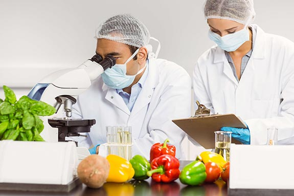 ConnectFood Food Safety Scientists